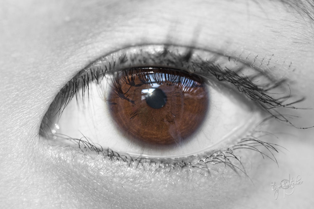 Franzis_Eye_EyeCatcher_Season_1_Classic-7749.jpg by danieldornhofer