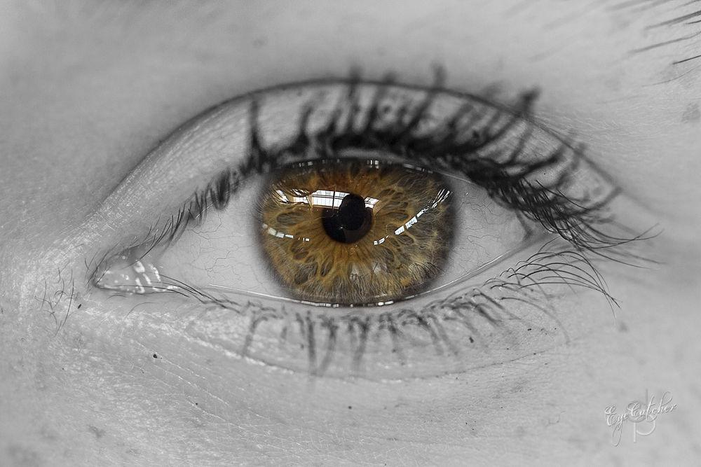 Lisas_Eye_EyeCatcher_Season1_Classic-.jpg by danieldornhofer