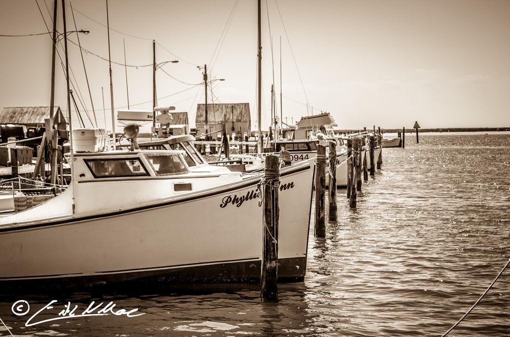 Photo in Black and White #boat #bw #black and white #blackandwhite #wood boat #chesapeake bay #chesapeake #saxis #wooden boat #waterman #workboat #eastern shore