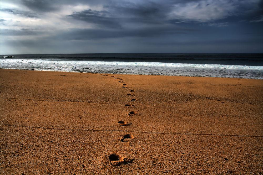Step by step by Joaquim Gaspar
