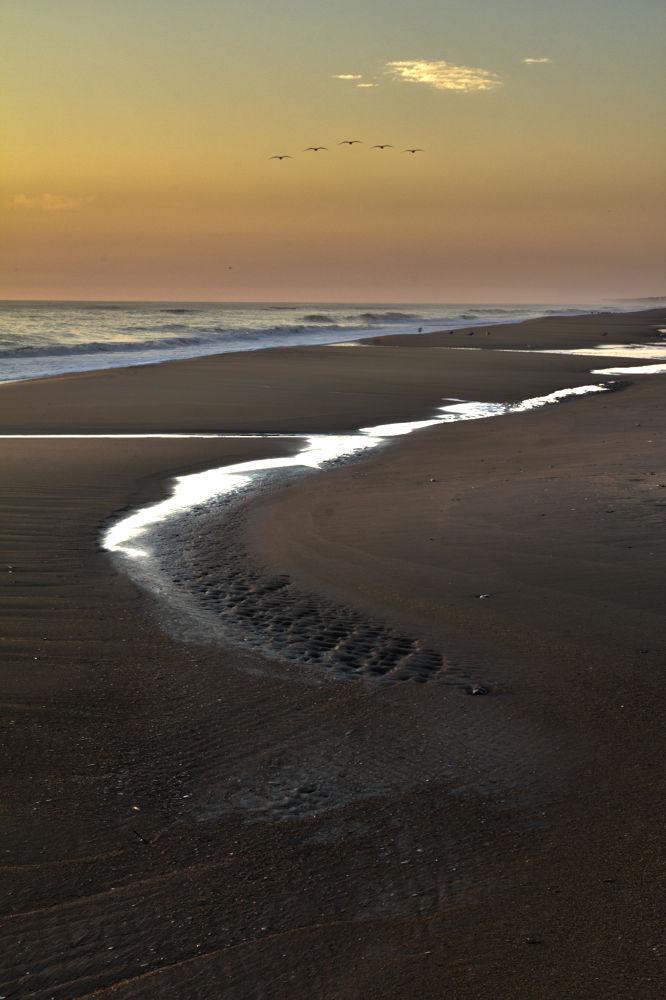 Beach-012.jpg by Berto7266