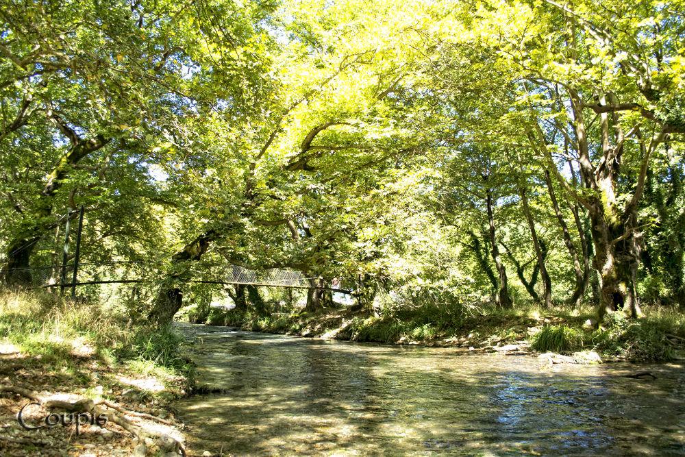 Louros river by George Thanasis
