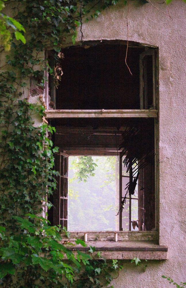 Photo in Random #lost place #ruin #ruine #fenster #windows #pink #germany #dortmund #nrw