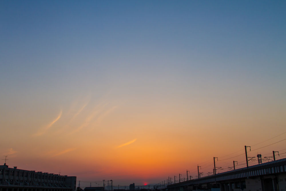 IMG_3261.jpg by MasaruMizuko