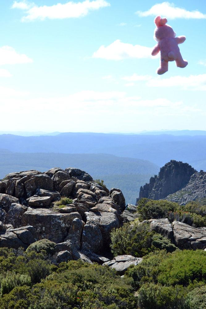 Tasmania by amaurismi