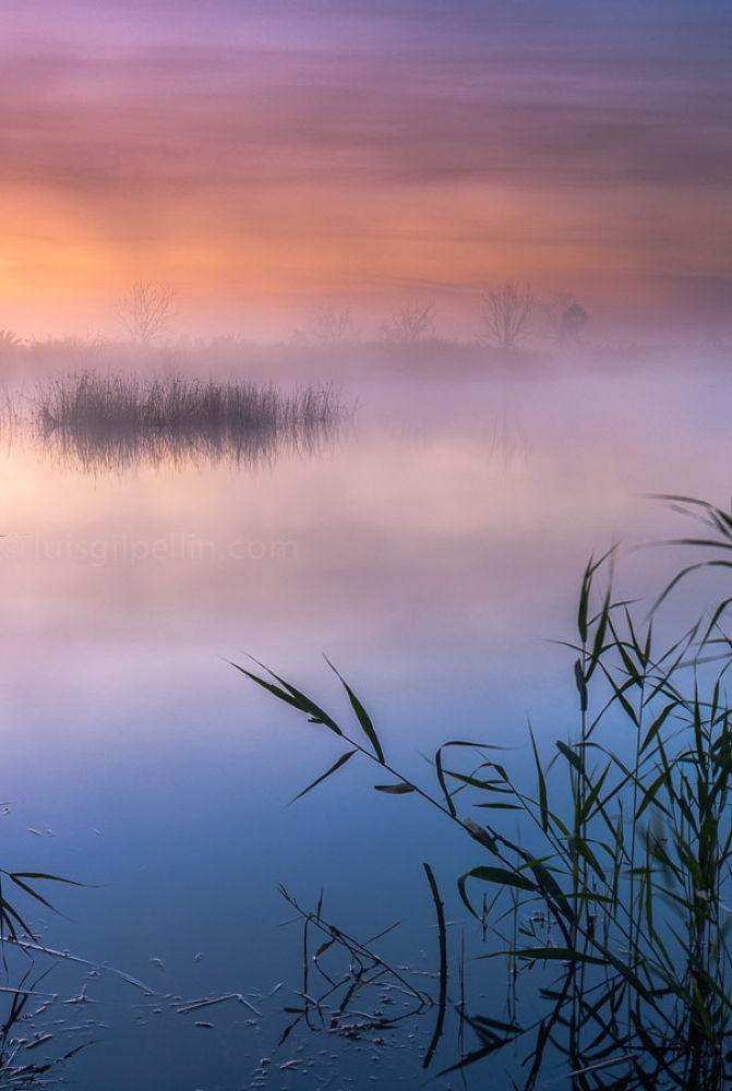 Photo in Landscape #sunrise #nature #water