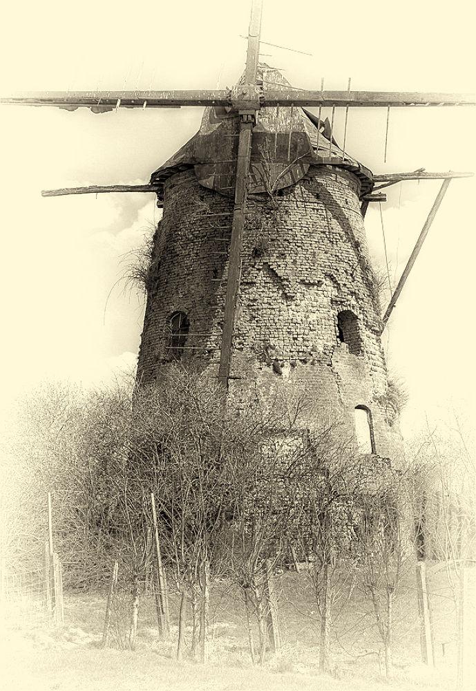 Windmill by patrickyolanda