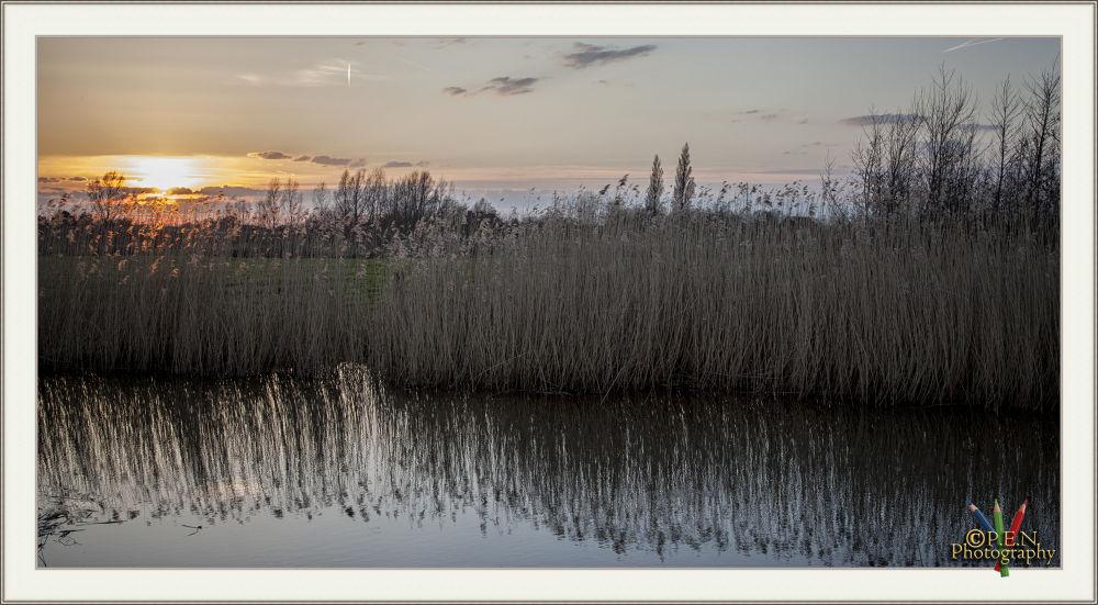 Sunset by patrickyolanda
