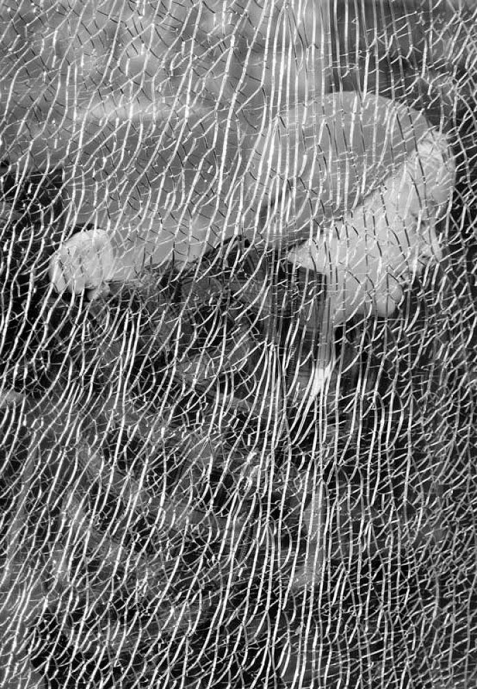 Broken-glass-Jonatan by Myhrehagen