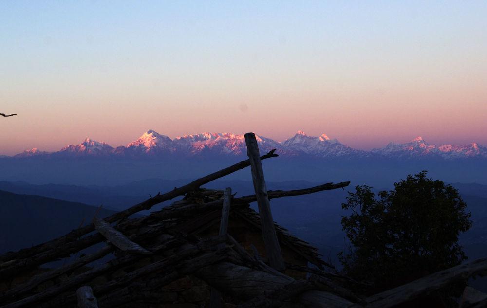 wilderness ! by prashantbhandari90