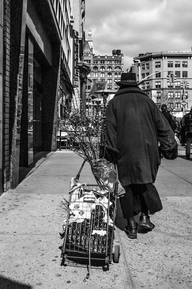 cart.jpg by MLEE