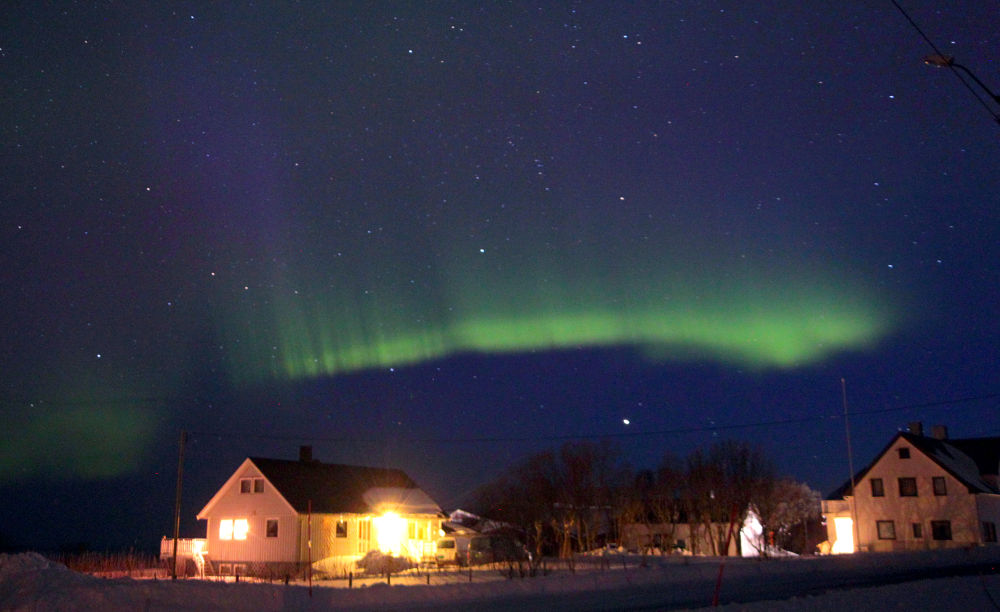 Aurora Borealis in the North of Norway/Vesteralen www.norwaypicture.com by rainerkammerlochner