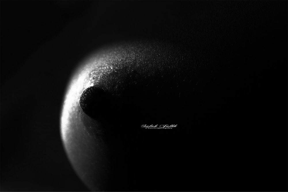sein gauche  by Salah Jalkh