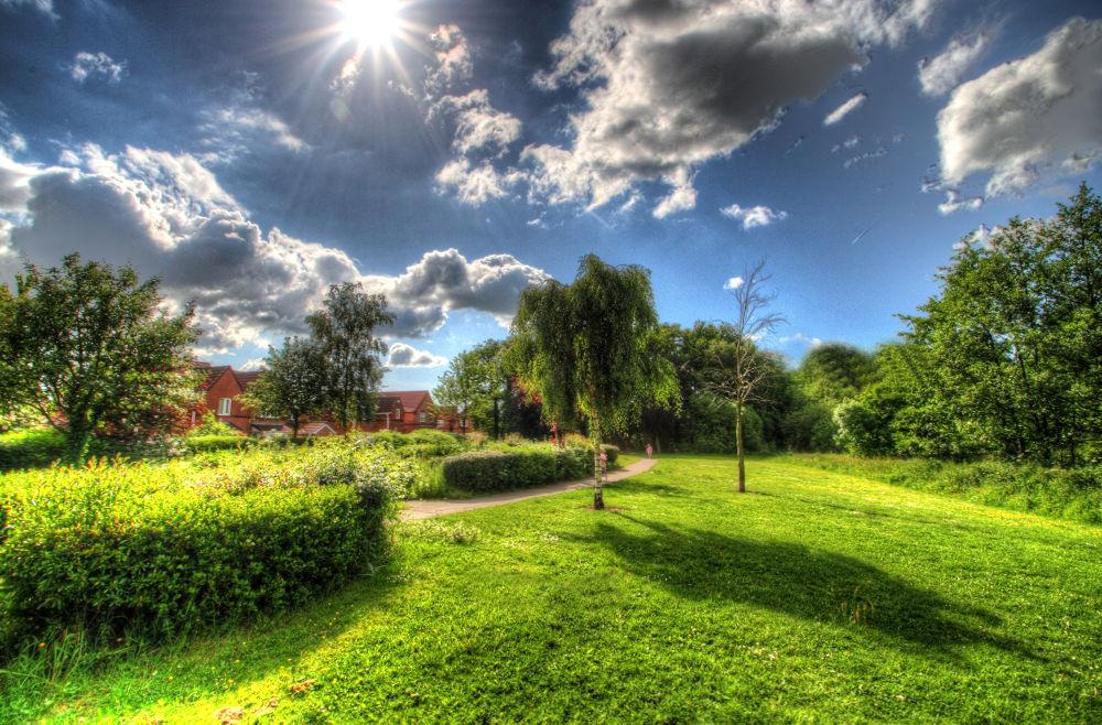 Landscape by adampester