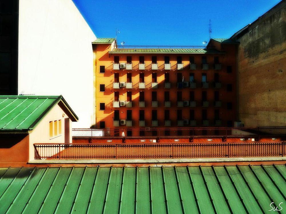Backyard by Ssabbra