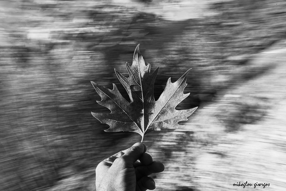 IMG_0729 by giorgos nik