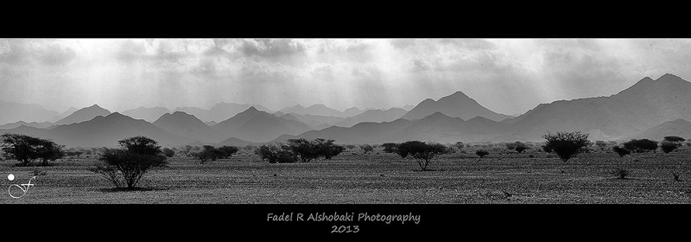 lights and shadow by fadhelalshobaki