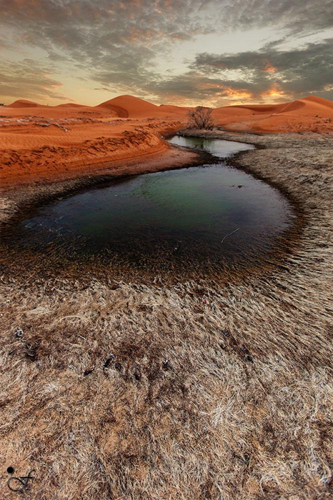 Zakhir lake, uae by fadhelalshobaki