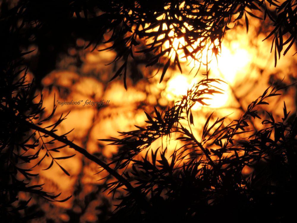A Beautiful Sun Dawn by najeed006