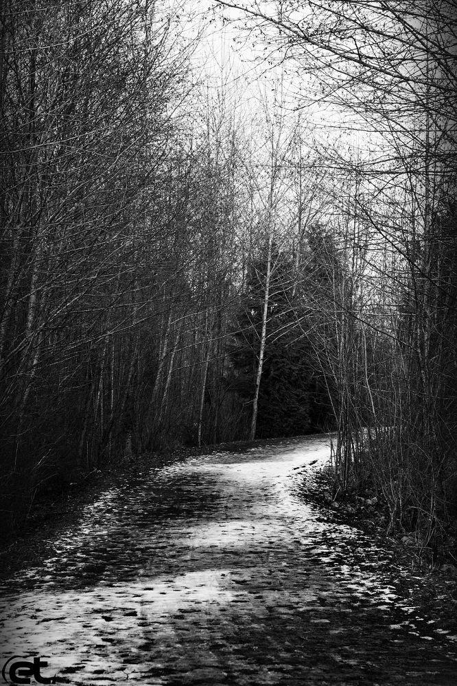 The Way by Emeal alhermz