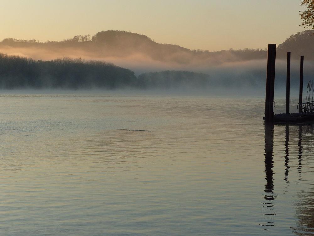 fall 2011 346 morning mist by maynardjeffers