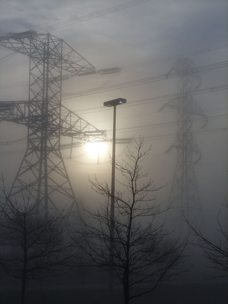 Picture 478 foggy morning by maynardjeffers