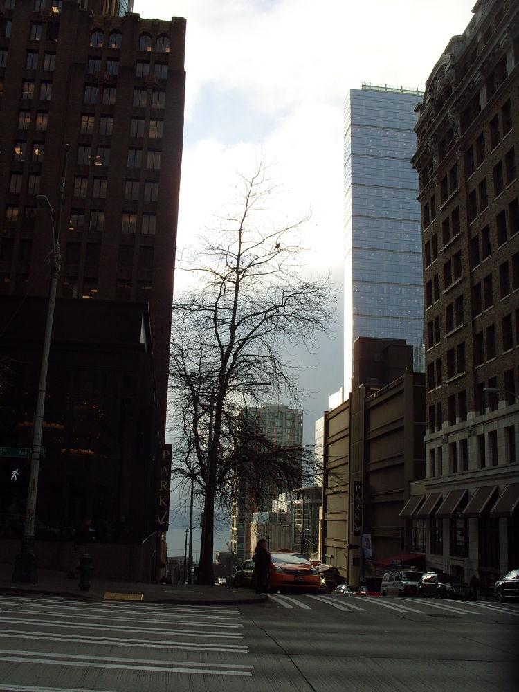 downtown Seattle by maynardjeffers