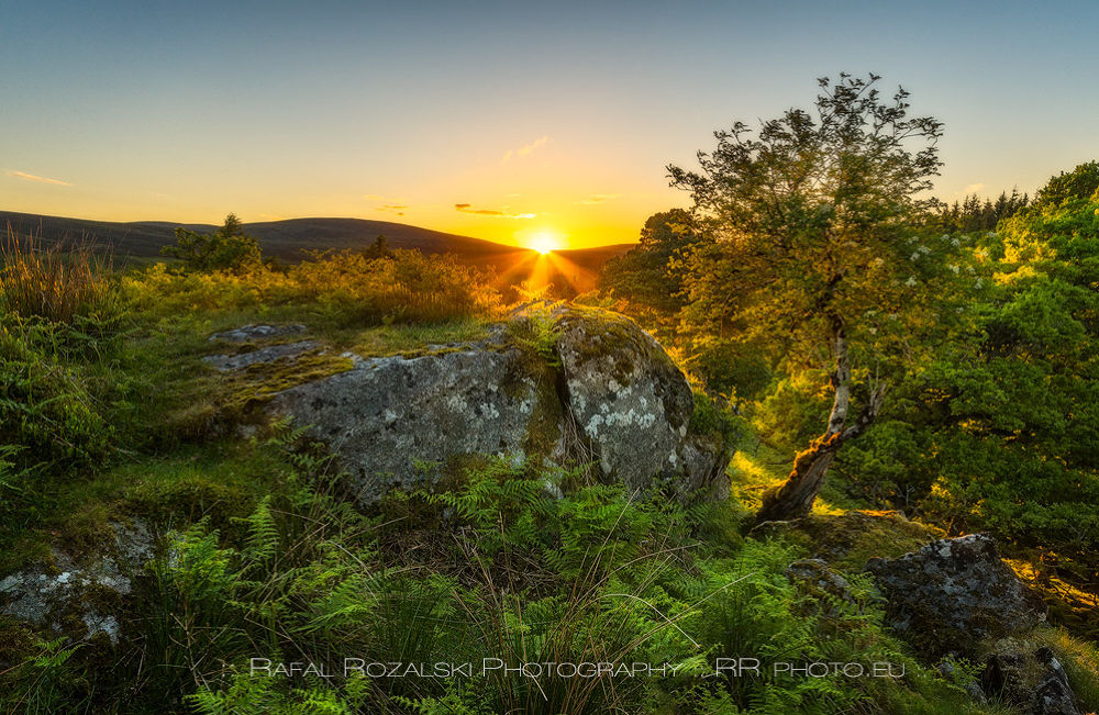 Wild Wicklow Mountains by biegly