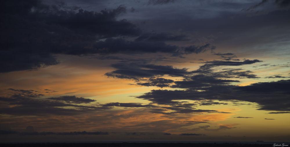Photo in Landscape #tramonto #notte #pisa #vecchiano