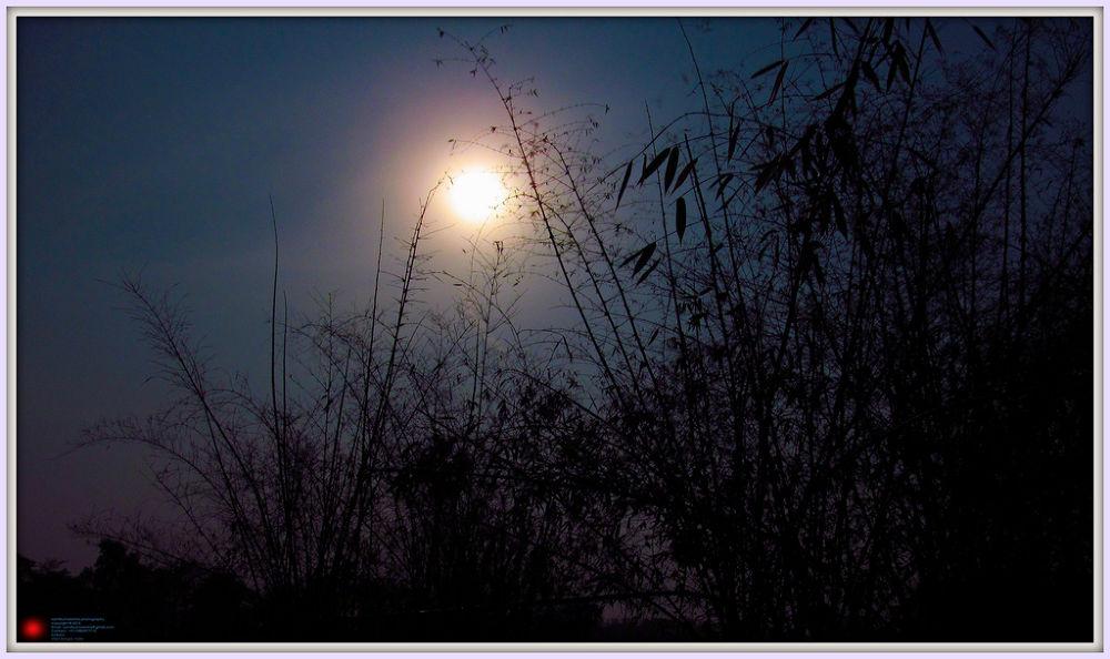 http://www.facebook.com/samitkumarsinhaphotography by samitkumarsinha
