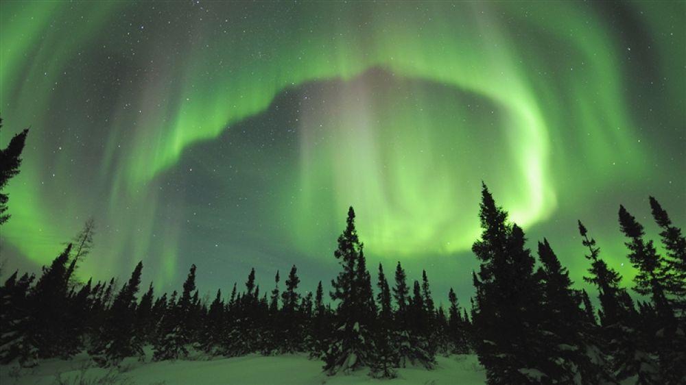571438-1366x768-Aurora-Borealis-Picture by hardeepsingh