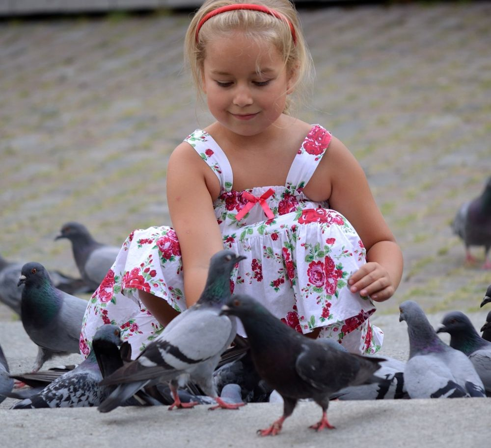 The girl and pigeons by habibi27