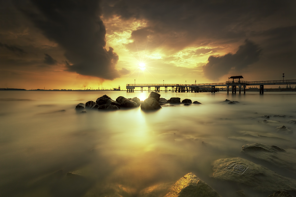 Golden Light by Partha Roy