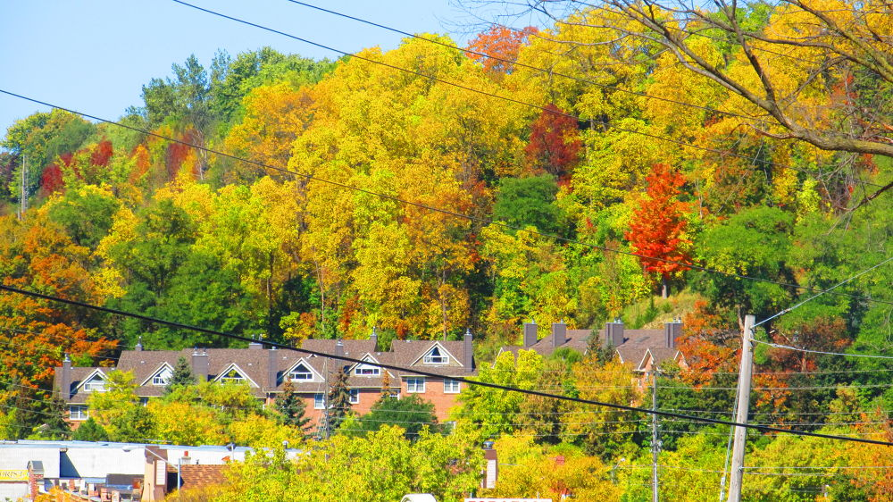Fall Colors in Bolton by simonp S&R Photography