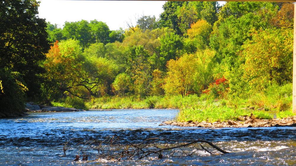 Autumn River by simonp