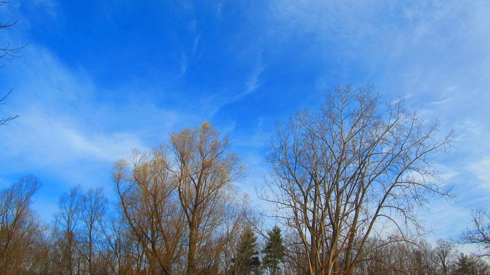 Cloudy blue Sky by simonp S&R Photography