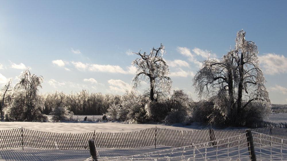 Snow and Ice by simonp