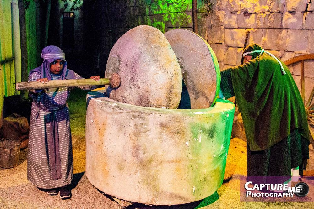 Live Crib 2013 - Old olive oil making method by jasonmuscat1