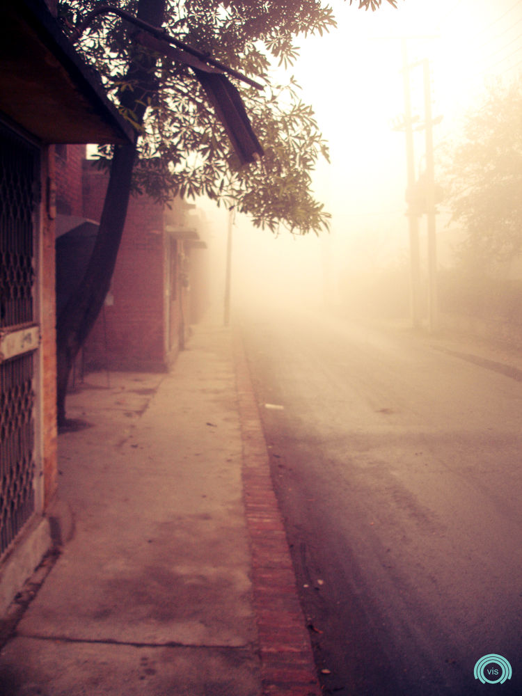In Fog by Ovais