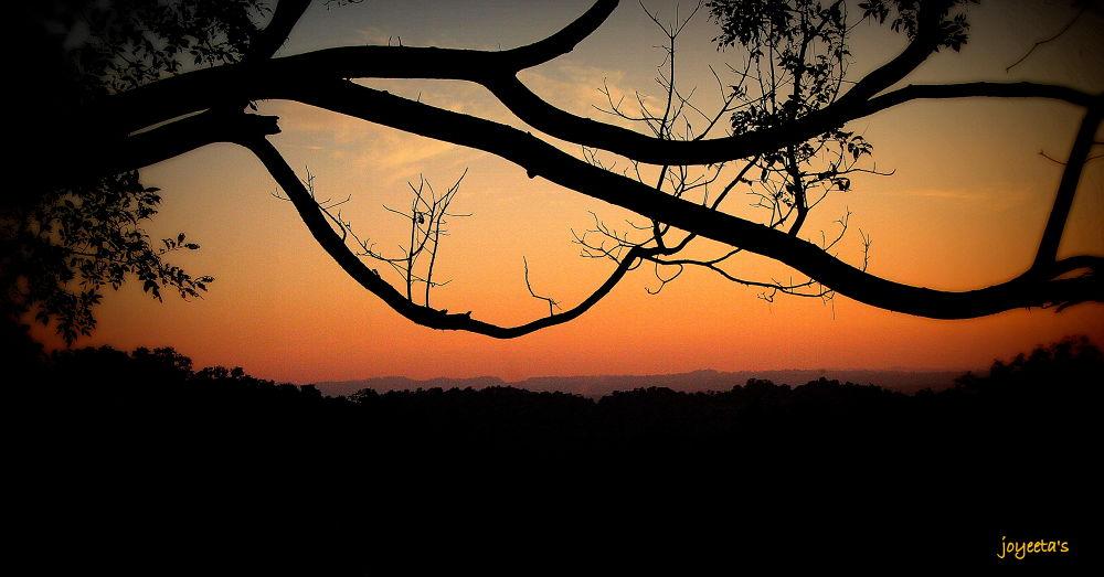 During Sunset by joyeeta4ever