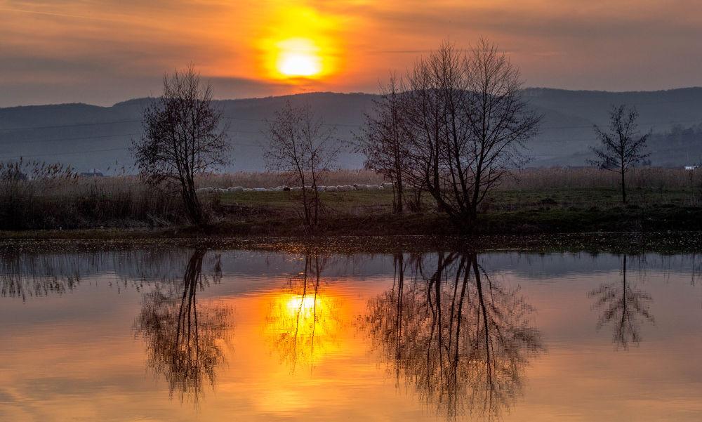 Sunset in Targu Mures by Hamos Gyozo