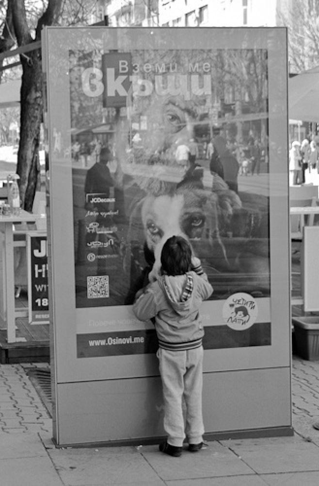 Take me home.jpg by Mihail Dimitrov