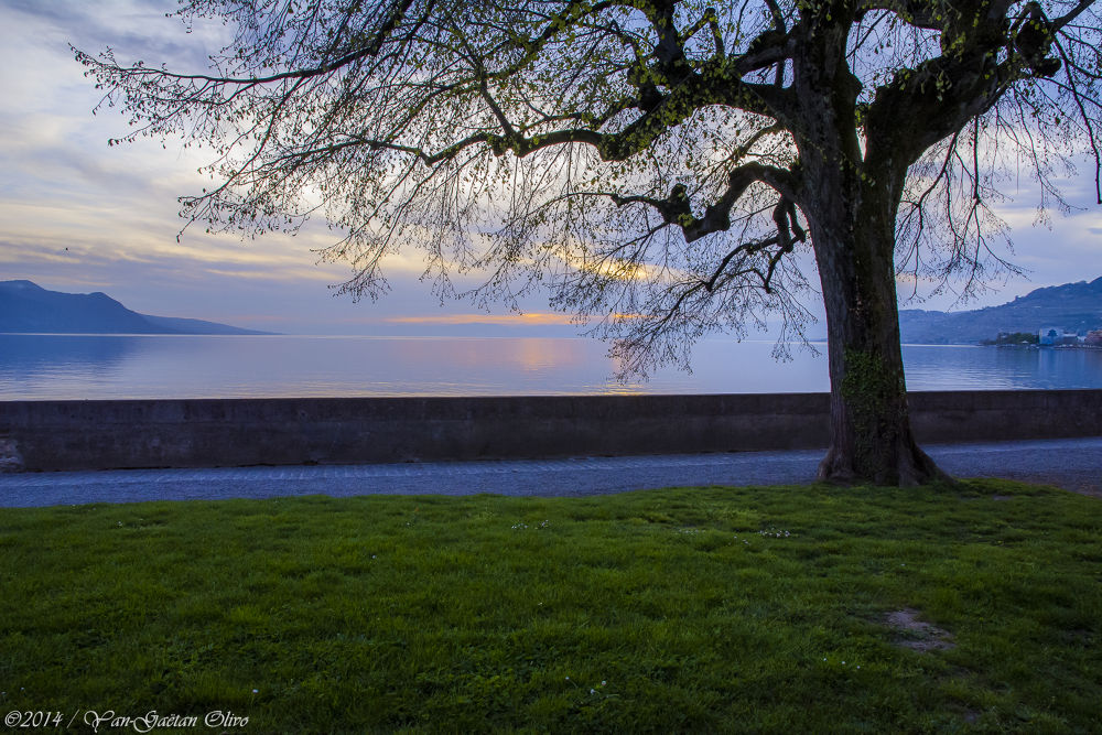 Sunset on Vevey / (CH) - (VD) by TheGueux