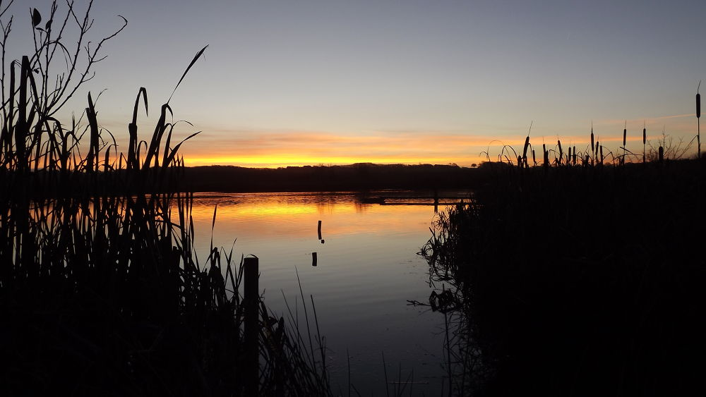 Daybreak at brockholes by stevefrawley5