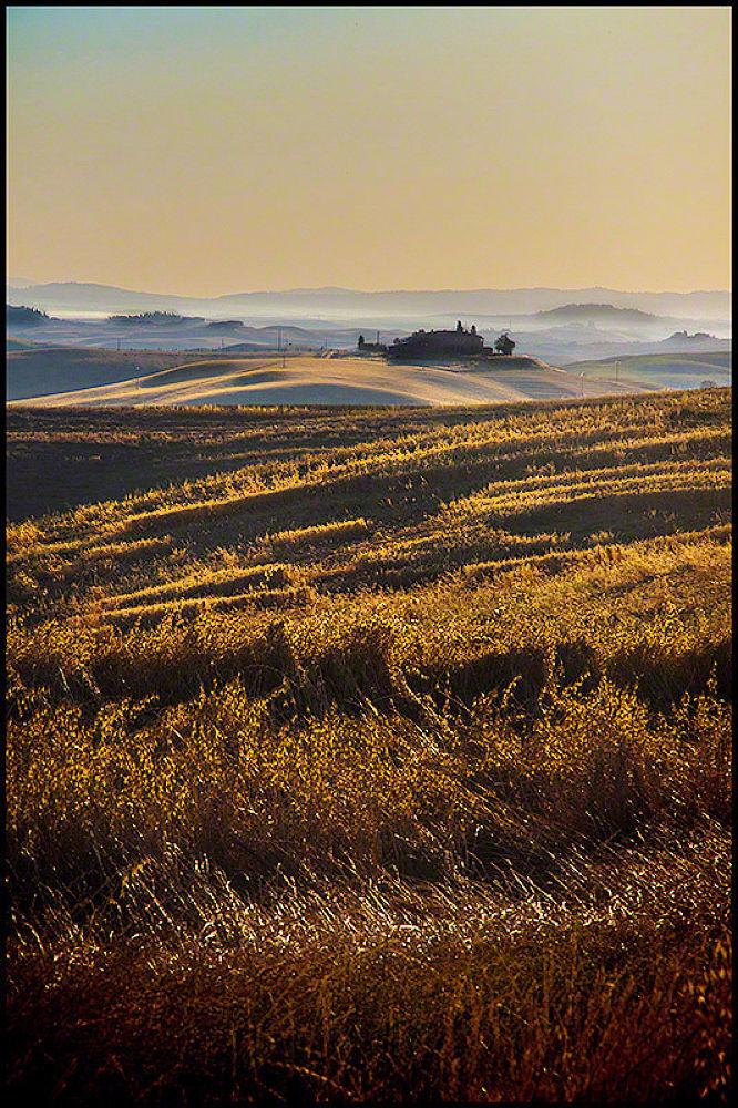 A morning field by dusanbrezovnik