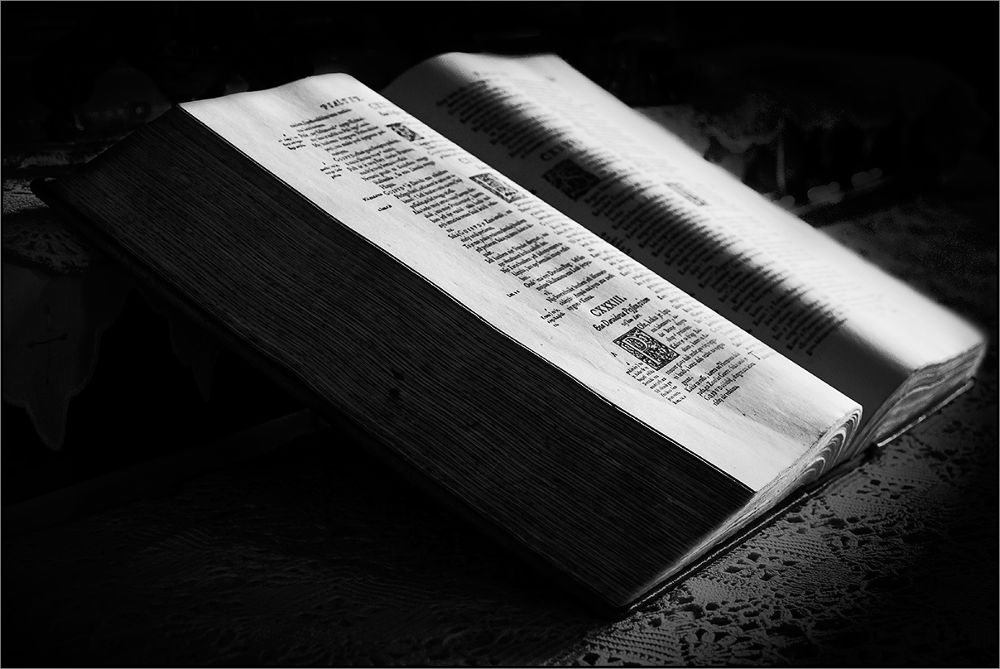 The book... by dusanbrezovnik