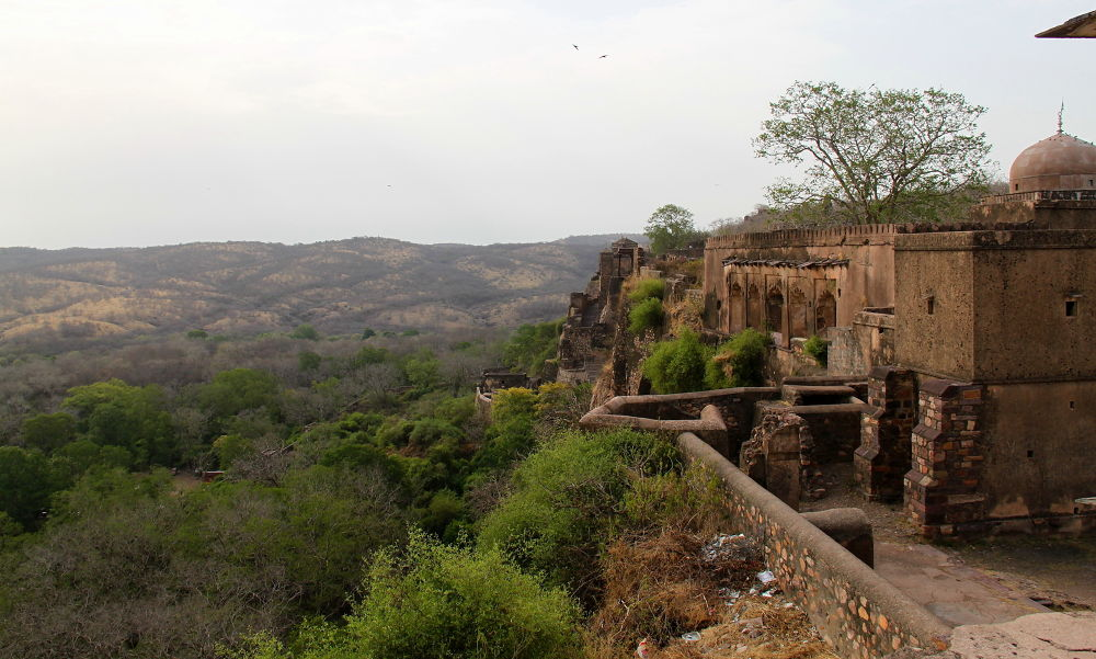 Ranthambore Fort a World heritage site  by Jay Vedant