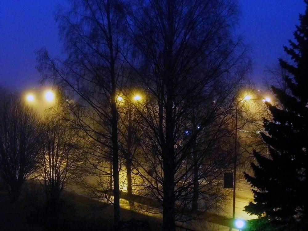 November morning by Ann