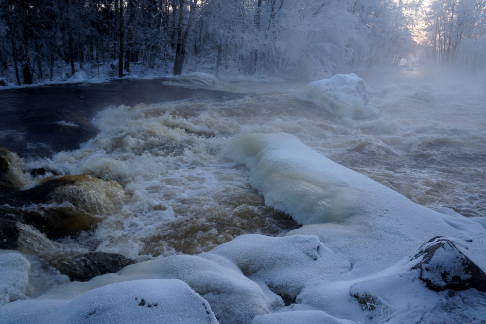 Rapids today morning by Ann