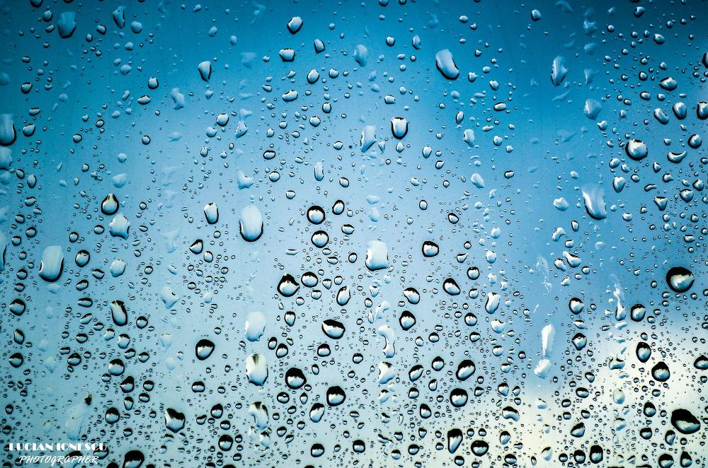 summer rain by lucian31